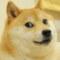 Dogecoin Analiz